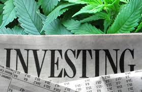 Cannabis Science Inc (OTCMKTS:CBIS) combines education and cannabis advocacy