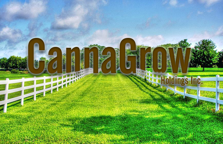 cannagrow-holdings-inc