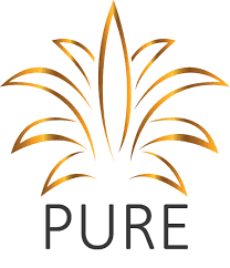 Pure Hospitality Solutions Inc. (OTCMKTS:PNOW) Approved for DWAC