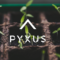 Pyxus International Inc (NYSE:PYX) Reports Lower Revenues Of $363.3 Million In Q3 2020